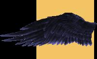 wingtestleft2.png